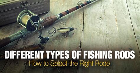 types  fishing rods