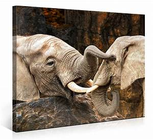 Rasendünger Tiere Unbedenklich : elefanten liebe 1004747 ~ Frokenaadalensverden.com Haus und Dekorationen
