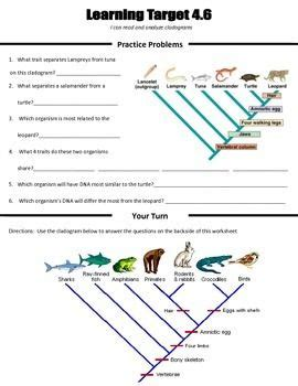 22 Best Classification Lessons And Resources For Biology Images On Pinterest  Physical Science