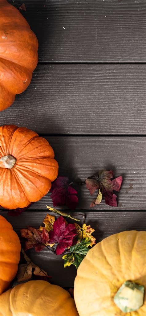 Aesthetic Thanksgiving Wallpaper by Pumpkin Wallpapers For Iphone Them Now