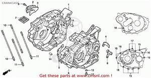 Honda Trx300ex Fourtrax 300ex 1995 Usa Crankcase
