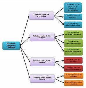 Diagrama Arbol Related Keywords