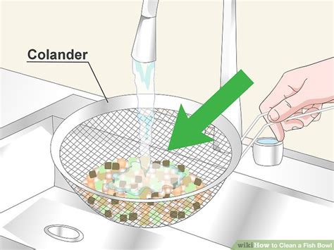 how to clean a fish bowl how to clean a fish bowl 12 steps with pictures wikihow