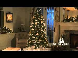 Balsam Hill Silverado Slim™ Christmas Tree Full View