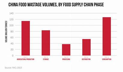 China Waste Supply Wastage Chain Farm Phase