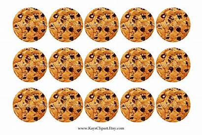 Cookie Clipart Chip Chocolate Cookies Clip Printable