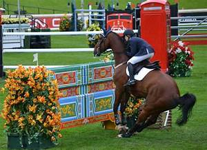 How To Respond To Rejection Email Olympic Equestrian Eventing Tickets Refusal Olympic