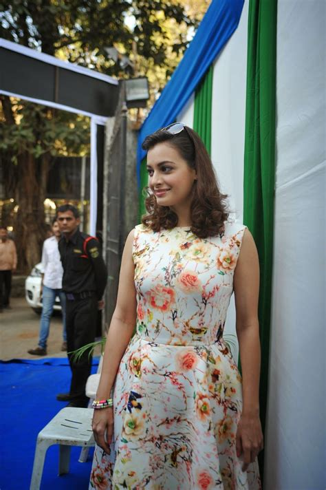 High Quality Bollywood Celebrity Pictures Dia Mirza Looks