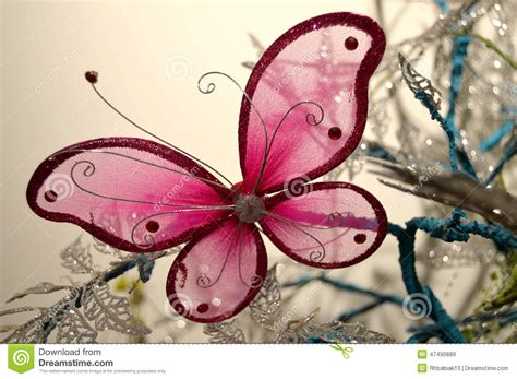 pink butterfly stock photo image