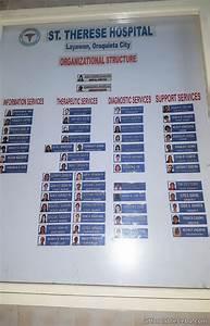 Hospital Organizational Chart Sample