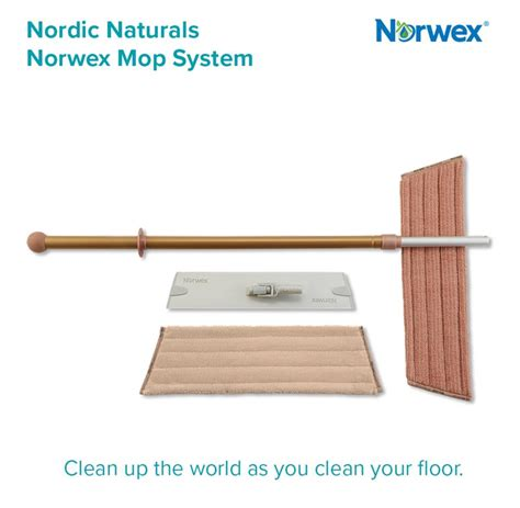 fall  norwex products  ready  order honest