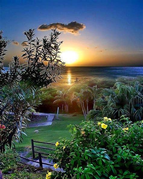 ° O o ° ° O o °   Beautiful images, Beautiful nature ...