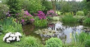 Böschung Bepflanzen Fotos : gartenteiche bepflanzen mein sch ner garten ~ Orissabook.com Haus und Dekorationen