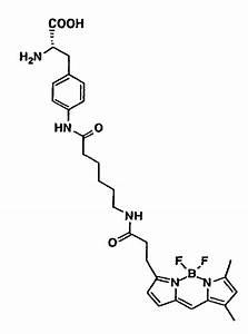 Patent Ep1439210a1