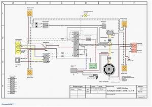 Wiring Diagram Likewise Chinese Scooter Further Honda