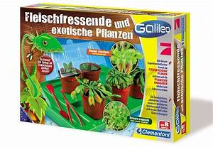 Fleischfressende Pflanzen Kaufen : schuhe kaufen auf rechnung sportschuhe herren web store ~ Michelbontemps.com Haus und Dekorationen
