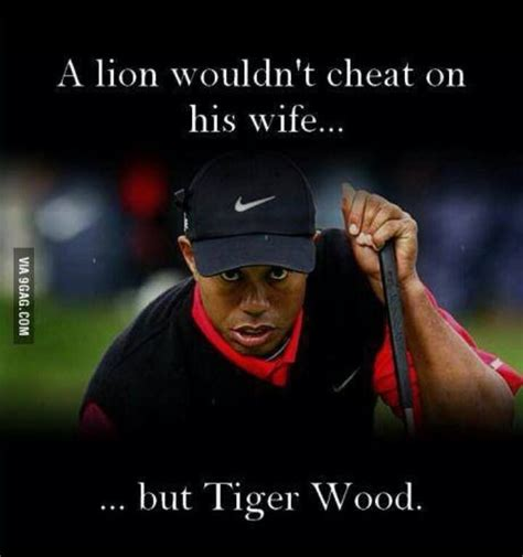 Tiger Woods Memes - 25 best ideas about tiger woods meme on pinterest ghetto funny ghetto humor and beyonce funny