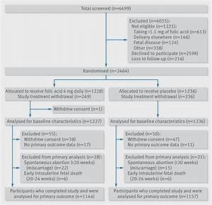 Effect Of High Dose Folic Acid Supplementation In