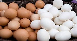 Brown Eggs Are Better Than White  Eggs Increase Cholesterol   Other Myths Busted