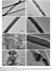 Collagen Synthesis Full Text Greener Synthesis Of Electrospun Collagen