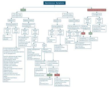 hypoglycemia workup approach considerations glucose