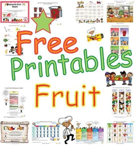 Fruit Food Group   Colorful Healthy Foods of MyPlate and