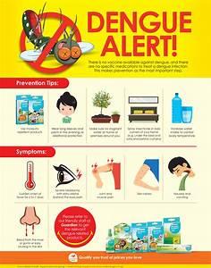Ways to prevent dengue fever essay