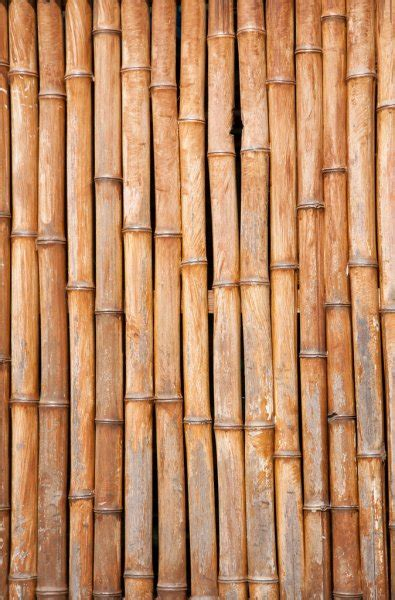 brown bamboo background stock photo  drpas