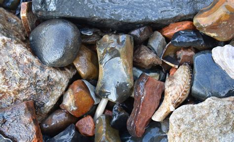 Mudlarking: Thames Mudlarking: A Day's Finds.