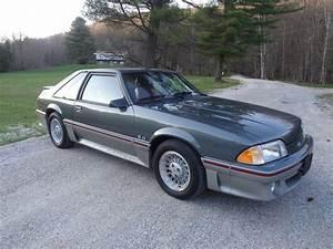 1987 Mustang GT 5.0 $13,999 (SOLD)