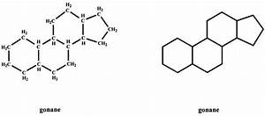 Production  Clearance  And Measurement Of Steroid Hormones