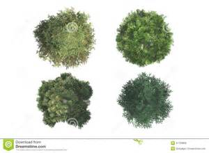 top view of trees stock photo image 41153859