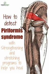 The 25  Best Piriformis Syndrome Symptoms Ideas On