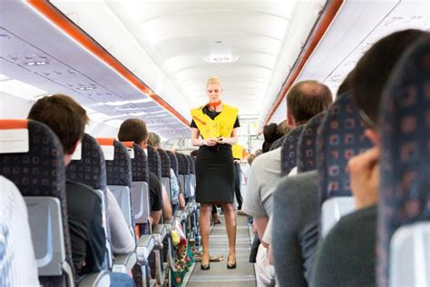 Cabin Crew by Cabin Crew Jargon Explained Telegraph