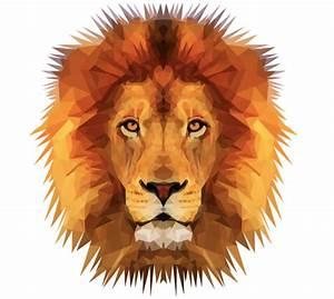 lion vector   Tumblr