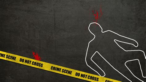Cool Cat Wallpaper Hd Police Accused Of Contaminating Crime Scenes Club Of Mozambique