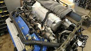 Shelby Gt500 Owner Buys Cheap Internet Tune  Grenades His  30 000 5 8l Engine