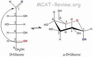 Carbohydrates - Biological Molecules - MCAT Review