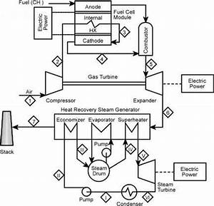 light wiring diagram for 220 220 volt diagram wiring With switch wiring diagram likewise gfci breaker wiring diagram moreover 12