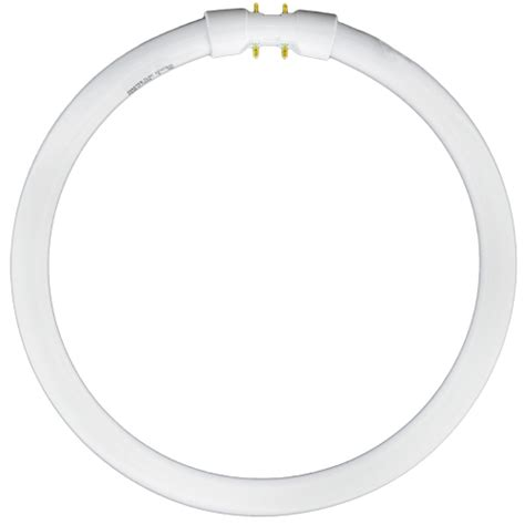 circline 22w t5 2gx13 the lighting superstore