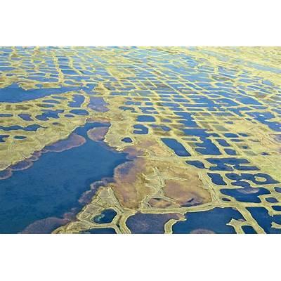 Polygone tundra Lena Delta Sakha Republic Siberia Russ