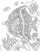 Coloring Sea Printable Under Animal Angelfish Adult Fish Adults Pdf Zentangle Mandala Therapy Ocean Angel Sheets Mandalas Digital Patterns Underwater sketch template