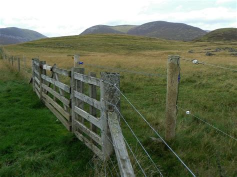 File Electric Deer Fence Geograph