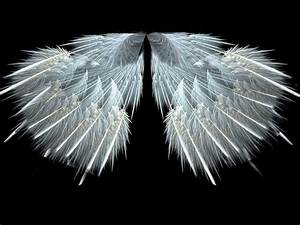 White Angels 12 Background - Hivewallpaper.com