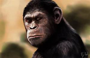 Planet Of the Apes 2014