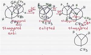 Newman Projection Of Butane