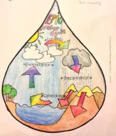 Droplet Water Cycle
