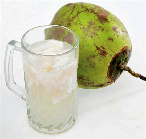 peluang bisnis es kelapa muda  analisa usahanya toko