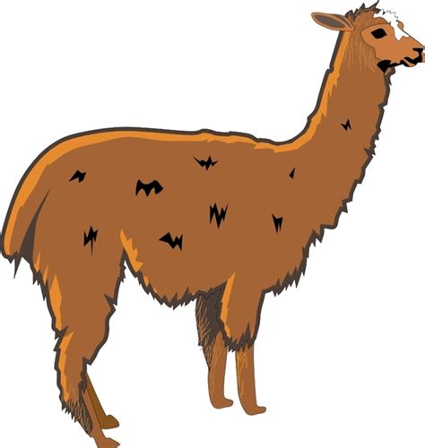 llama  vector  open office drawing svg svg