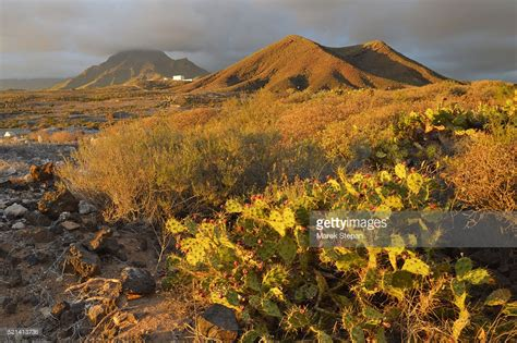 landscape picture tenerife canary islands arid landscape stock photo getty images